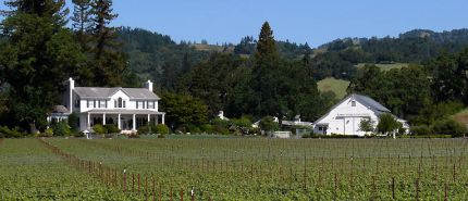 Elegant Wines Await at Robert Young Estate Winery