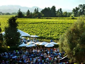 Rodney-summer-concerts_sonoma_county