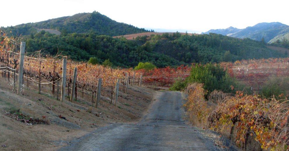 Bella Vineyards & Wine Caves located in Dry Creek Valley