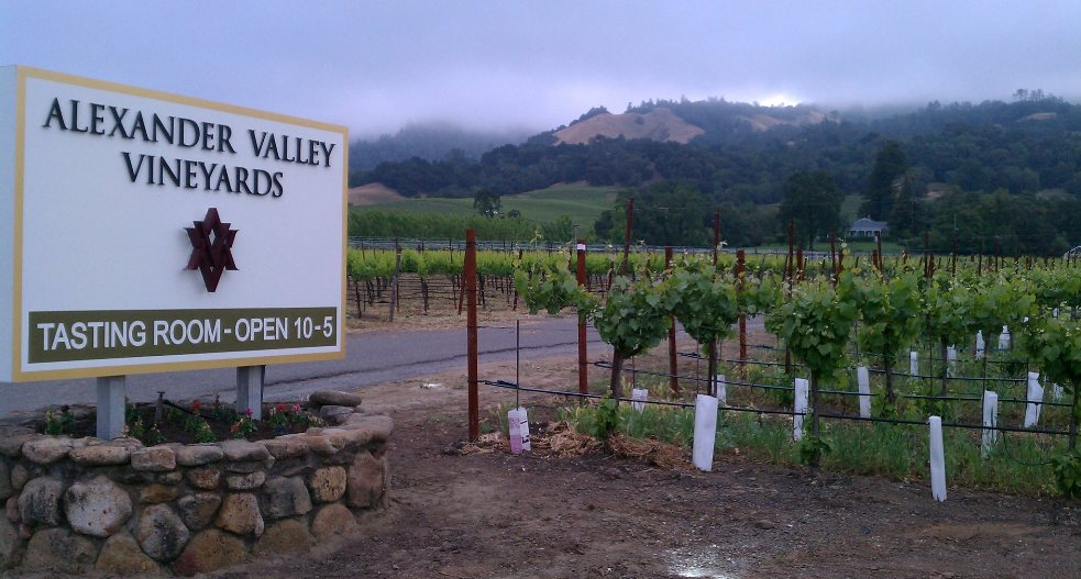 Entering Alexander Valley Vineyards