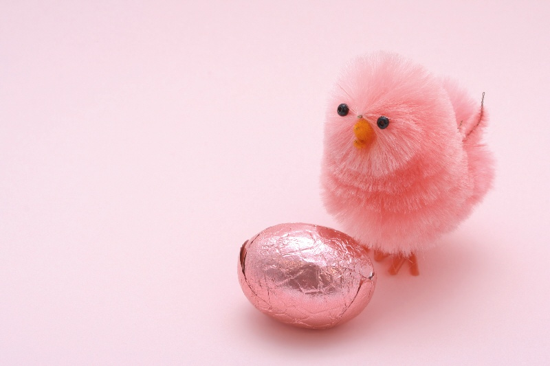 pink easter chicken