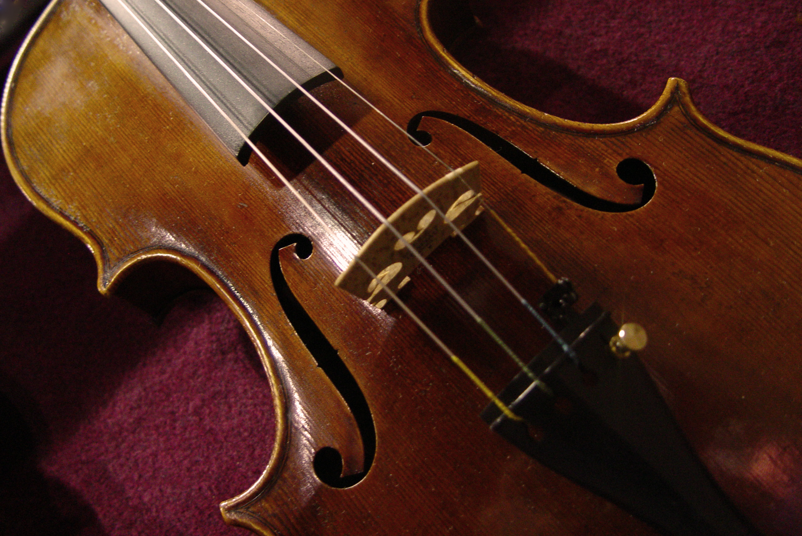 violin reclined