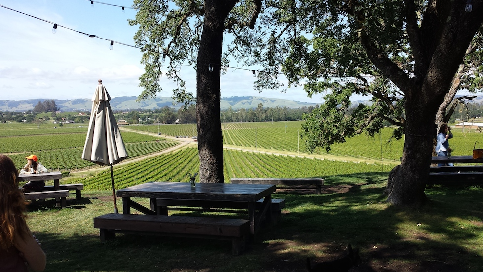 4 Wineries You Have To Visit In Napa Valley