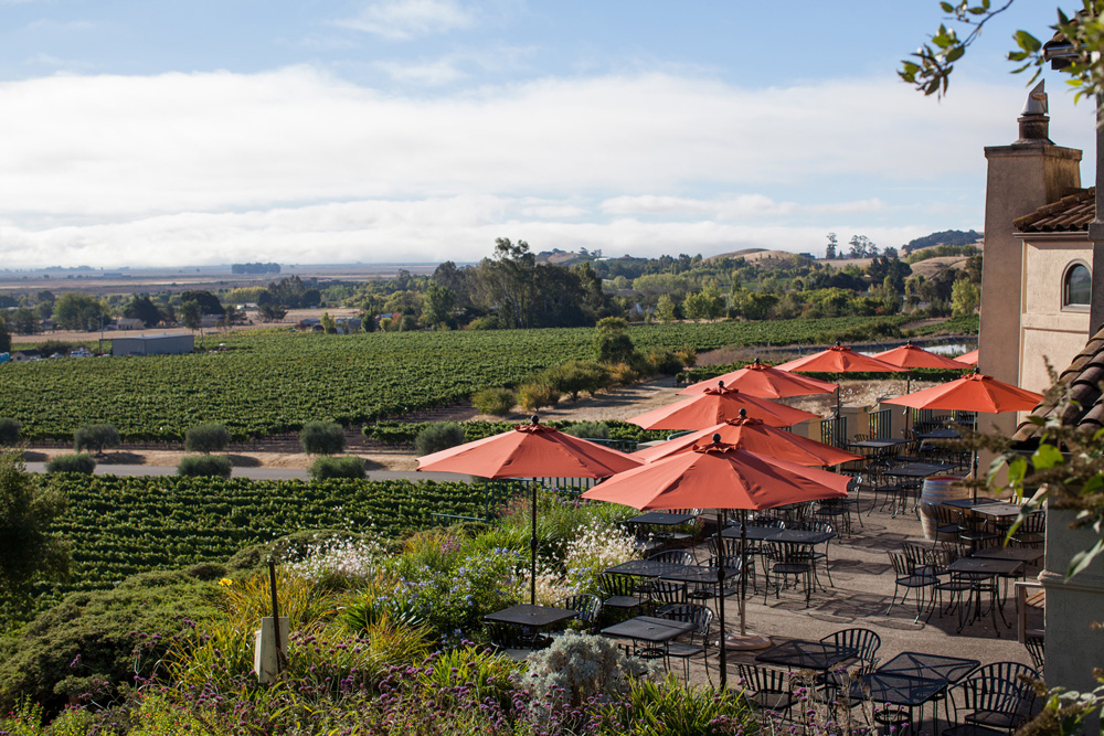 Sonoma Winery Events in January